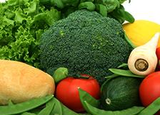 研发蔬菜育苗新技术
